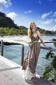 The beautiful woman in a long dress on the wooden bridge near the sea.