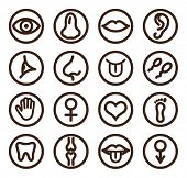 foto of semen  - Medical line icon set for web and mobile - JPG