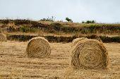 foto of hay bale  - Hay Bale In The Foreground Of Rural Field - JPG