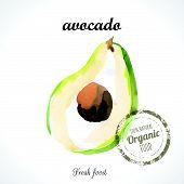 stock photo of turnip greens  - Watercolor green fresh avocado - JPG