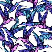 image of colibri  - Flying tropical colorful hummingbirds with flowers seamless pattern - JPG