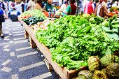 foto of exotic_food  - Fresh vegetables and exotic fruits in Mercado Dos Lavradores - JPG