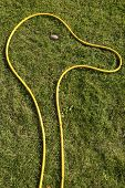 Yellow Hose Pipe Shaped Into A Head With Big Nose On Green Grass