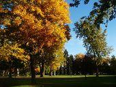 A City Park In Autumn In Denver Colorado
