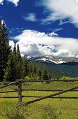 Colorado Mountain Pasture