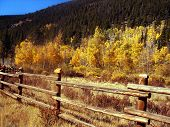 Rural Country Autumn Scenic In Colorado