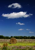Hay Bale And Clouds