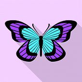 Aqua Purple Butterfly Icon. Flat Illustration Of Aqua Purple Butterfly Vector Icon For Web Design poster
