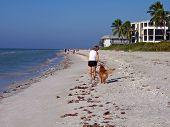 Perro de mujer caminando en la playa
