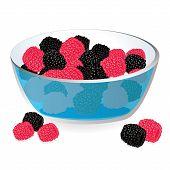 Wild berries in bowl vector