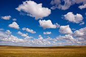 Grassland And Cloudscape