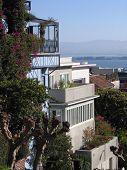 Scenery Near San Francisco