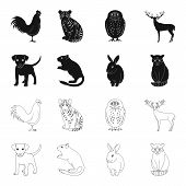Puppy, Rodent, Rabbit And Other Animal Species.animals Set Collection Icons In Black, Outline Style  poster