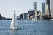 Sailing On St Charles River