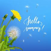 Dandelion Bush Flying Seeds Blue Background. Handdrawn Lettering Hallo Summer. Stylized Poster On Th poster