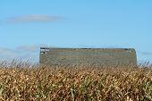Farm Roof