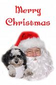 Santa Claus. Santa Claus with a cute small dog. Isolated on white. Room for text. Christmas images w poster
