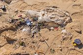 Discarded Garbage By Wave At Beach, Cigarette Butt, Plastic Packaging And Bottle Cork At Sandy Shore poster