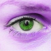 The Human Eye. Eye Of A Girl Close-up. Beautiful Insightful Look Of Green Eyes. Beautiful Eyes And C poster