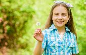 Having Fun. Girl Rustic Style Making Wish And Blowing Dandelion Nature Background. Why People Wish O poster