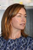 LOS ANGELES - JUN 20:  Julianne Nicholson arrives at HBO's