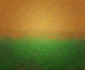 Sand and Grass Texture