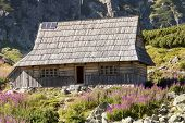 Wooden Cottage In Five Lakes Valley - Tatra Mountains, Poland.