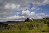 Tuscan farmhouse (Podere)