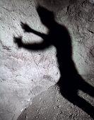 Stalker Shadow