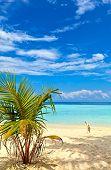 Nice Beach
