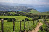 Green Fields On Biscay Coast Near Gorliz, Basque Country, Spain