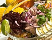 The Tuna Salad Mexican Style