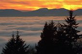 Vancouver Sunset Fog