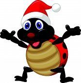 Happy ladybug cartoon wearing red hat