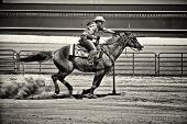 image of barrel racer  - Western horse and rider competing in pole bending and barrel racing competition - JPG