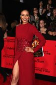 LOS ANGELES - NOV 18:  Meta Golding at the The Hunger Games:  Catching Fire Premiere at Nokia Theate