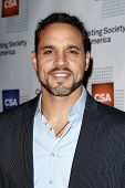 NEW YORK-NOV 18; Actor Daniel Sunjata attends the CSA 29th Annual Artios Awards ceremony at the XL N