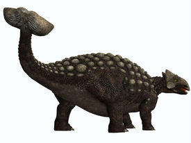 picture of ankylosaurus  - Ankylosaurus was a heavily armored herbivore dinosaur from the Cretaceous Period - JPG