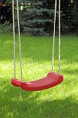 Garden swing hanging on tree.