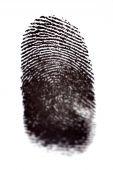 picture of dna fingerprinting  - Fingerprints with Black Ink on White Paper - JPG