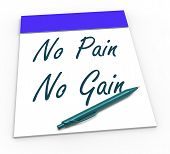 No Pain No Gain Means Toil And Achievements