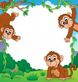 Monkey thematic frame 1 - eps10 vector illustration.