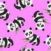 picture of panda  - Cute panda with bamboo over pink  - JPG