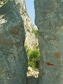 Pathway through crack in stones