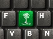 Computer keyboard with green palm tree key