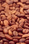 Vertical coffee background, macro of seeds