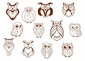 Cute cartoon vector owl characters