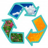 Recycling symbol (my photos used) isolated on white background