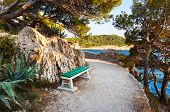Pathway, bench and sea - vacations background