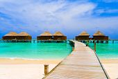 image of kuramathi  - Water bungalows at a tropical island  - JPG